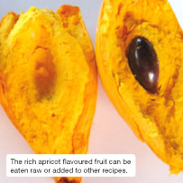 The rich apricot flavoured fruit can be eaten raw or added to other recipes.