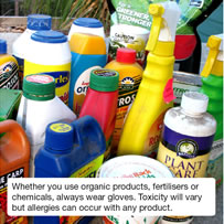Whether you use organic products, fertilisers or chemicals, always wear gloves. Toxicity will vary but allergies can occur with any product.