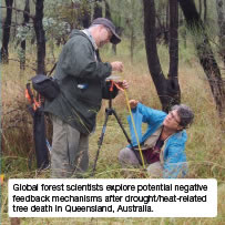 Global forest scientists explore potential negative feedback mechanisms after drought/heat-related tree death in Queensland, Australia.