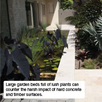Large garden beds full of lush plants can counter the harsh impact of hard concrete and timber surfaces.
