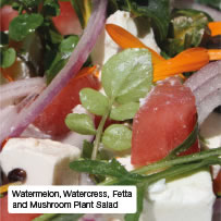 Watermelon, Watercress, Fetta and Mushroom Plant Salad