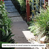 Use low plants in small areas to conserve space.