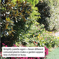 Simplify palette again – fewer different coloured plants make a garden appear less cluttered or busy.